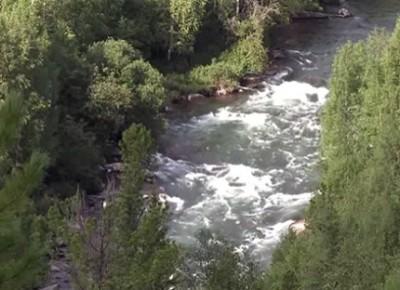 Река киномана