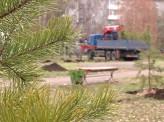 В сквере на улице Новгородская высадили 60 деревьев