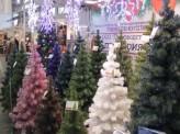 В Красноярске открылась Большая Рождественская ярмарка